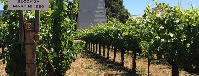 Handley Winery is one of Mendocino.