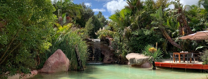The Lost Springs is one of NZ.