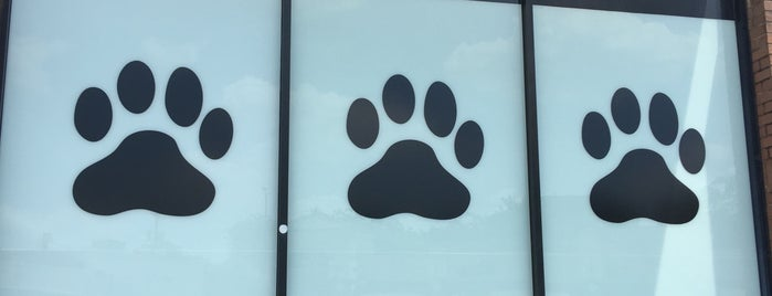 Metro Paws Animal Hospital is one of Tempat yang Disukai Chris.