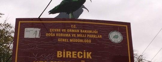 Birecik Kelaynak Üretme İstasyonu is one of สถานที่ที่ Guzide Seyma ถูกใจ.