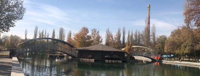 Ecopark is one of Uzbekistan.