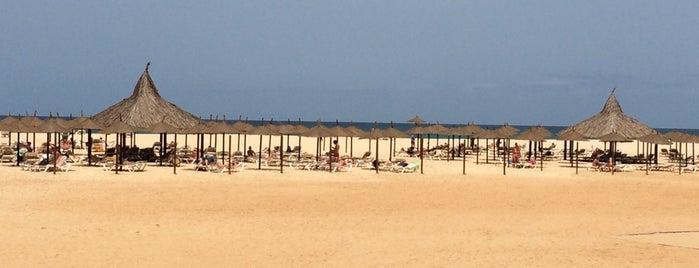Illha de Boa Vista is one of Orte, die Ana gefallen.