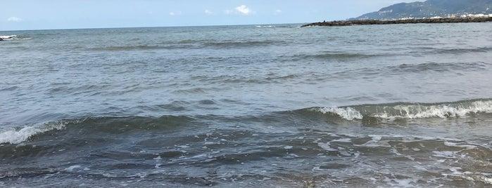 Espiye Liman is one of Tempat yang Disukai Onur.