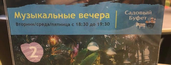 Cадовый буфет is one of Недорого.