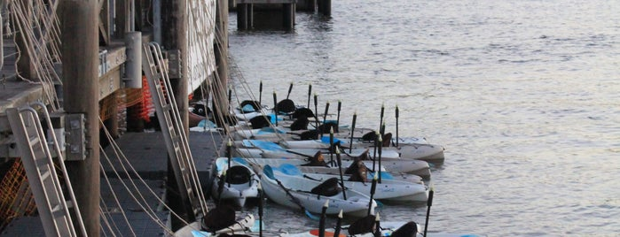 Riverlife is one of Lugares favoritos de Thiago.