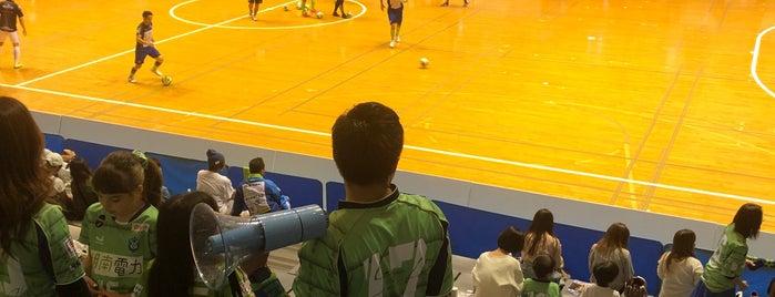 Odawara Arena is one of Locais curtidos por Yuji.