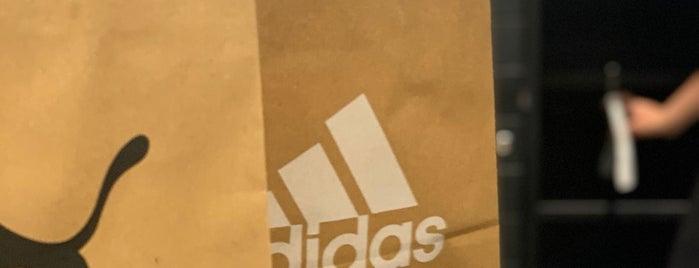 adidas is one of Tempat yang Disukai Baris.