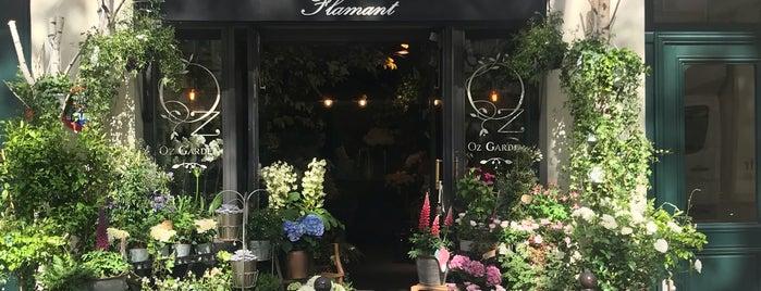 Flamant Paris is one of Paris.