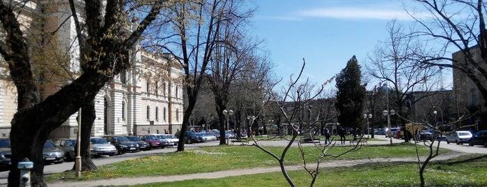 Trg Vojvode Radomira Putnika is one of Make sure to visit in Kragujevac.