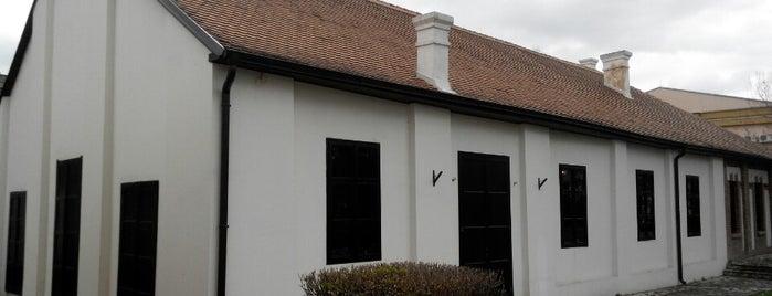 Stara skupština is one of Make sure to visit in Kragujevac.