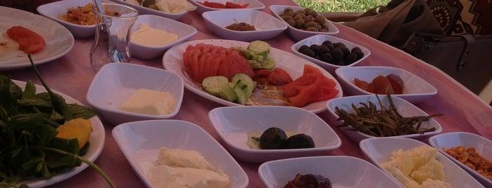 Sibel Kafeterya Yörük Kahvaltısı is one of Lieux sauvegardés par Celâl.