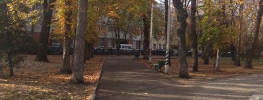 Сад им. Радищева is one of สถานที่ที่ Stanislav ถูกใจ.