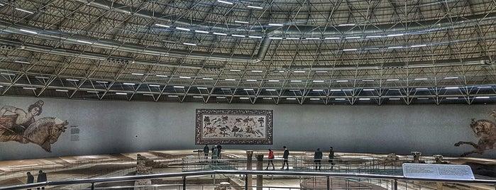 Haleplibahçe Mozaik Müzesi is one of Şanlıurfa.