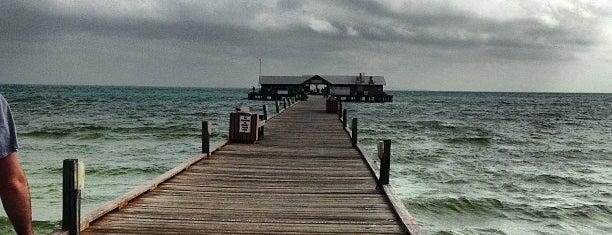 Anna Maria City Pier is one of Locais curtidos por Bonzo.