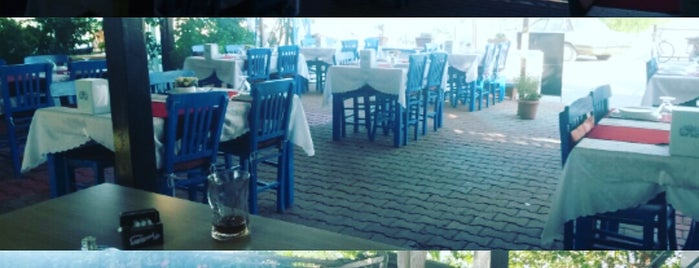 Dolphin Restaurant & bar is one of Muğlaa <3.