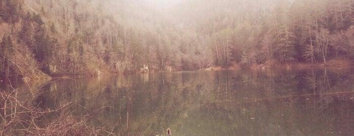 Sülüklü Göl is one of Feyza'nın Beğendiği Mekanlar.