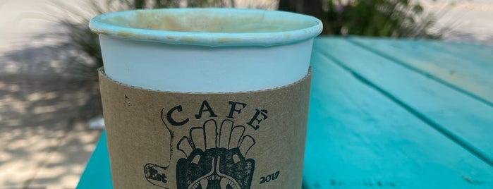 Cafe Azteca is one of Ron'un Beğendiği Mekanlar.