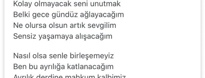 Iyaş Bulvar is one of Gittiğim Yerler2.