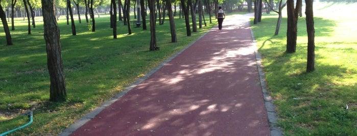 Laleli Yürüyüş Parkı is one of İzmir & Manisa.