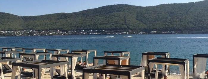 Titanic Deluxe Beach Bar is one of Locais curtidos por Snm.