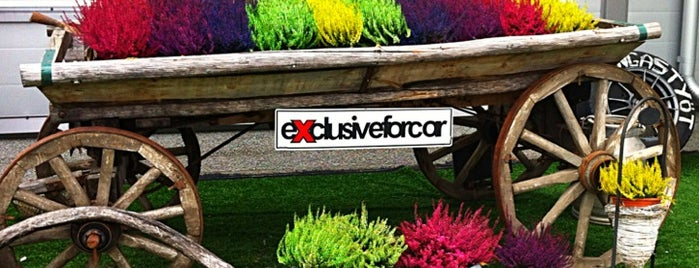 ExclusiveForCar.com is one of ✨S.Babaev'in Kaydettiği Mekanlar.