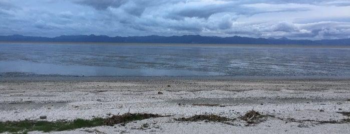 Kaiaua is one of Top picks for Beaches.