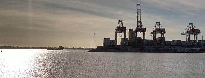 Puerto de Montevideo is one of Posti che sono piaciuti a Henrique.