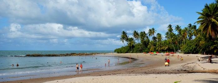 Praia de Coqueirinho is one of Fábio 님이 좋아한 장소.