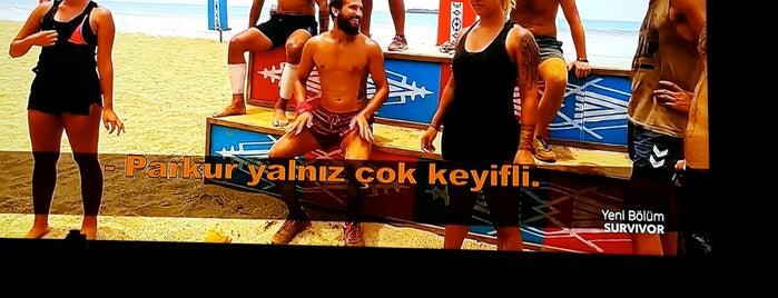 Star Konutları is one of Yeea.