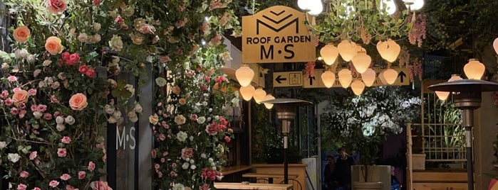 Ms Roof Garden is one of Athens Café.