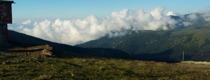Mesoraş Yaylası is one of Mountain Resorts In Black Sea Region.