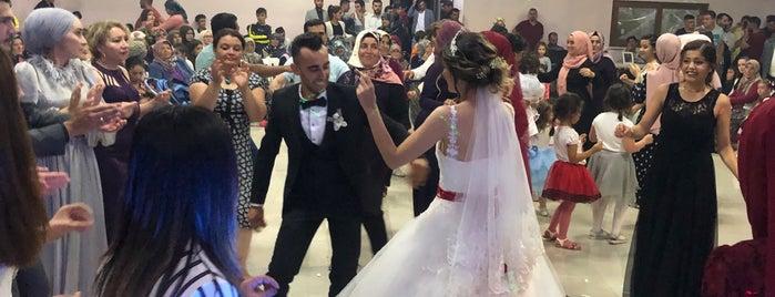 Güneykent belediye düğün salonu is one of Locais curtidos por Ergün.