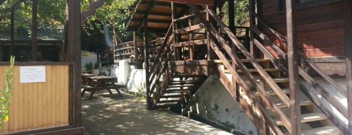 Gürle Alabalık Çiftliği & Restoran is one of Tempat yang Disukai İsmail.