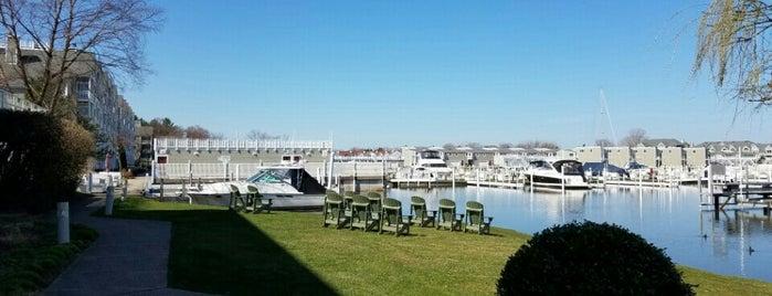 The Harbor Grand is one of Joe 님이 좋아한 장소.