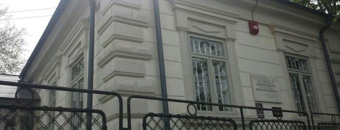Casa Memorială George Bavovia is one of Бэкау.