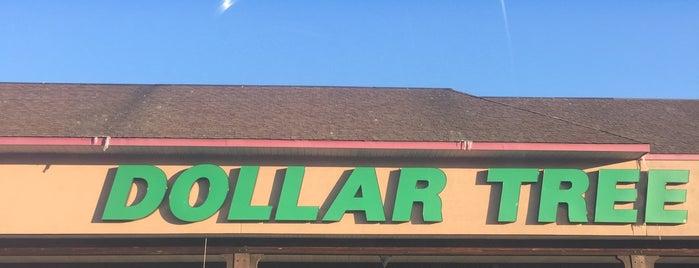 Dollar Tree is one of Tempat yang Disukai Lindsaye.