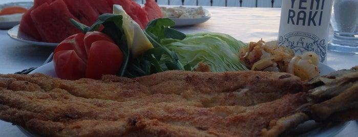Emmioğlu Restaurant is one of ANKARA :)).