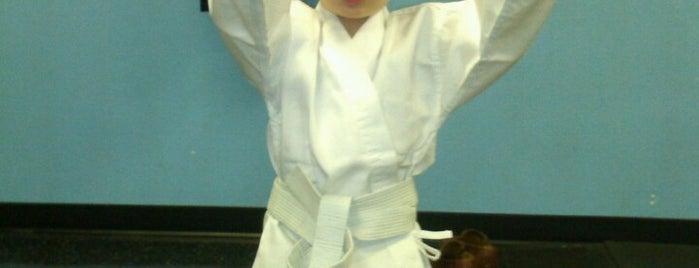 Karate For Kids is one of Locais curtidos por Amanda.