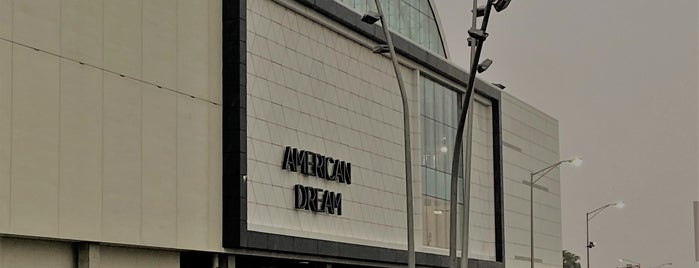 American Dream is one of New Jersey Shopping Malls.