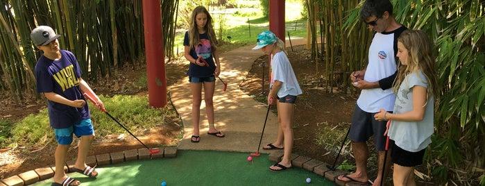 Kauai Mini Golf is one of Locais salvos de Lily.