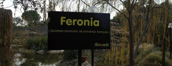 Feronia is one of Zuhal'ın Kaydettiği Mekanlar.