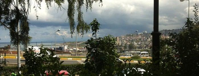 Aşıklar Parkı is one of Muro baskan.