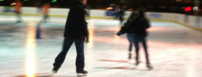 Blue Cross River Rink is one of 100 Things to Do in Philly.