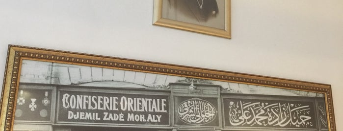 Cemilzade Selamiçeşme is one of Locais salvos de Aydın.