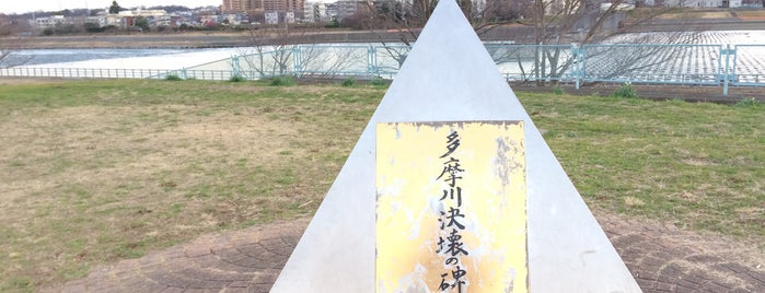 多摩川決壊の碑 is one of 気になる.