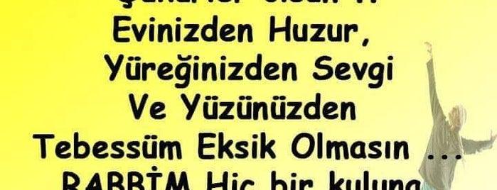 Saray Kokoreç is one of Aydın'ın Kaydettiği Mekanlar.