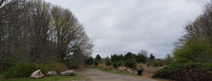 Discovery Park is one of Seattle to-do list.
