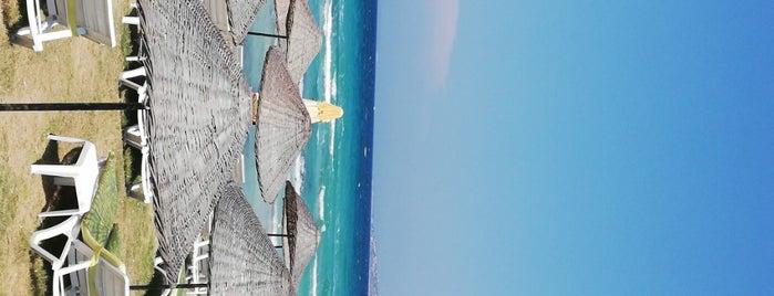 Ocean Beach is one of Yusuf'un Kaydettiği Mekanlar.