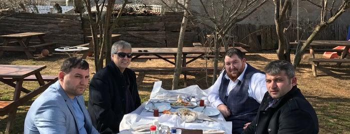 Tarihi Kırkpınar Kuzu Çevirme is one of Muhammet'in Kaydettiği Mekanlar.