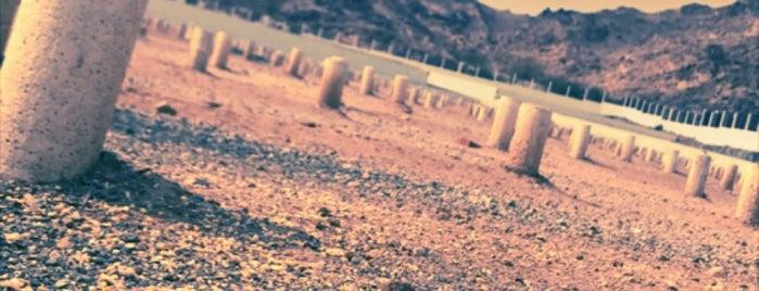 مقبرة الشرائع || Sharaya'a Cemetery is one of Cihad'ın Kaydettiği Mekanlar.